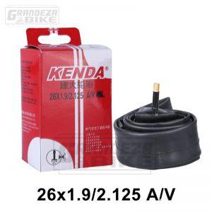 kenda-camara-26-grueso-01